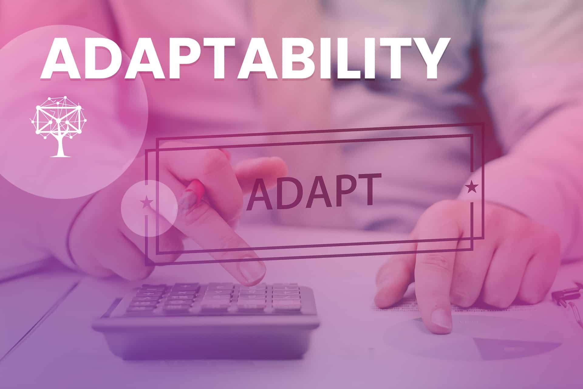 Adaptability is a customer service skill