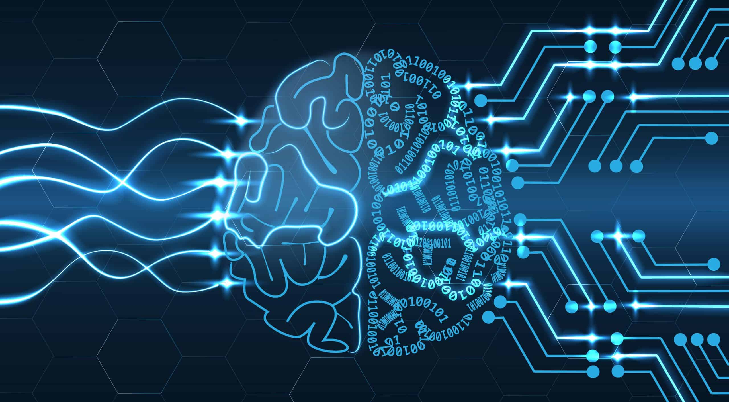 Blue Turtle Technologies, South Africa's leading enterprise technology management company